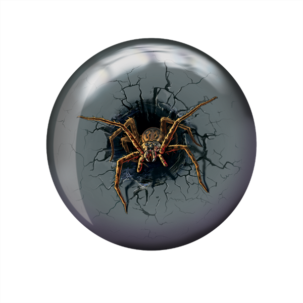 60_400596_93X_spider_lrg_front_no_shdw.png